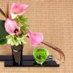Ikebana: Arrange your Life by Arranging Flowers
