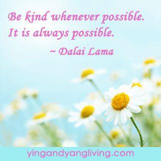 Zen Message Pink Flower Blue Sky