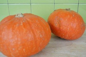SmallSizedPumpkins