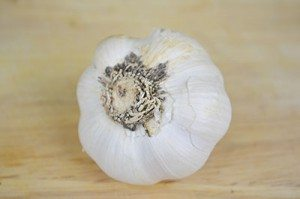 Garlic-Ingredient
